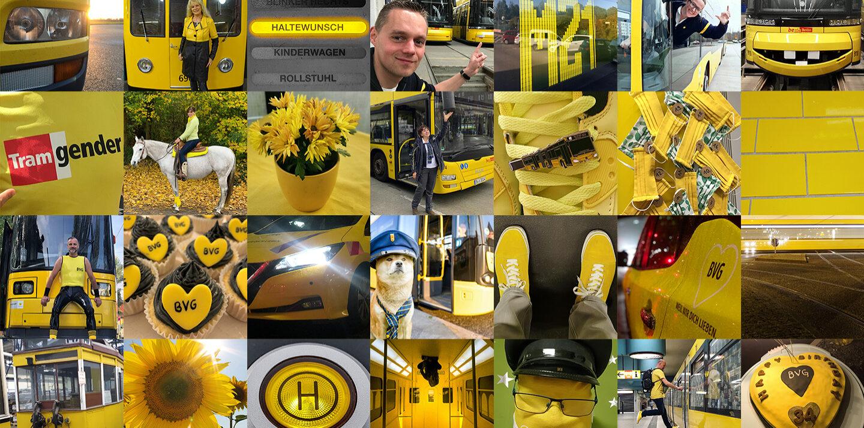Eine Collage mit mehreren Bildern, auf denen immer etwas Gelbes zu sehen ist. In ihr ist ein Schriftzug