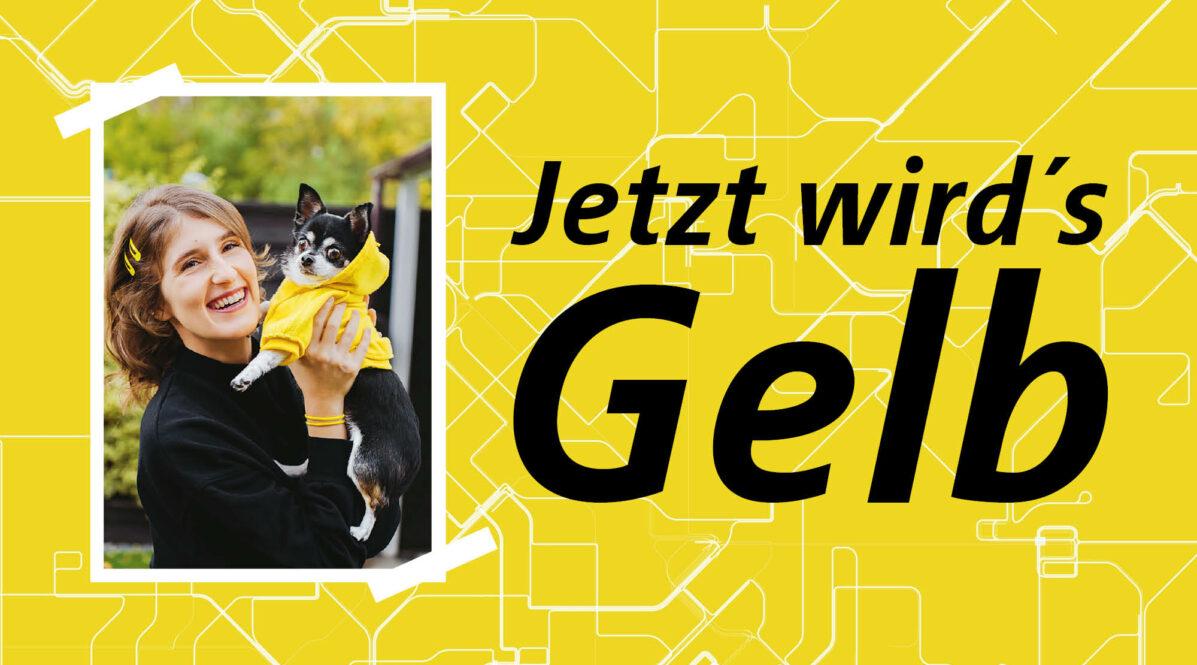 Auf einem gelben Hintergrund ist das Foto einer Frau zu sehen, die einen kleinen Chihuahua hochhebt. Der Hund trägt einen gelben Hundepullover mit Kapuze. Neben dem Foto steht ein großer Schriftzug: